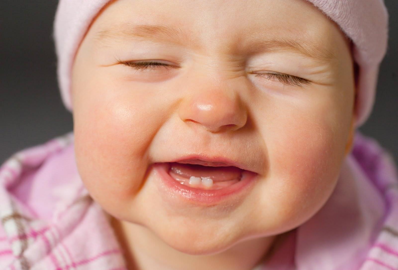 الأسنان اللبنية, عدد الأسنان اللبنية ومتى تُستبدل